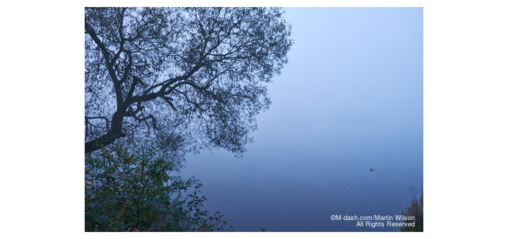 Misty Morning at Attenborough Nature Reserve, November 2014