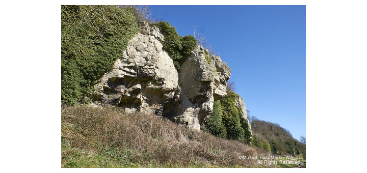 Creswell Crags, home of ice age hunters - PC250036
