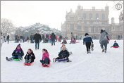Sledging in Wollaton Park