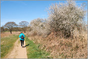 A Walk by the Alde to Snape Maltings