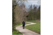 A winding way, Bestwood, Nottinghamshire
