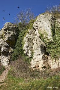 Creswell Crags –PC250041
